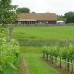 barn_from_vineyard