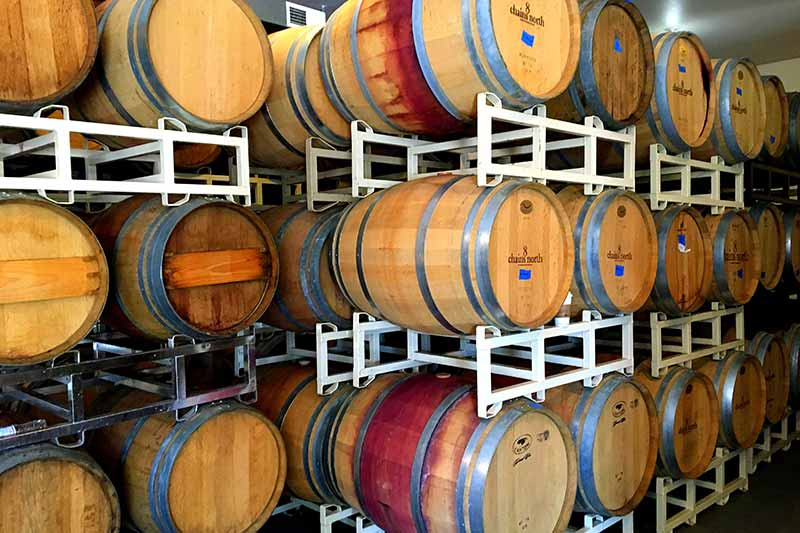 wine barrels in production
