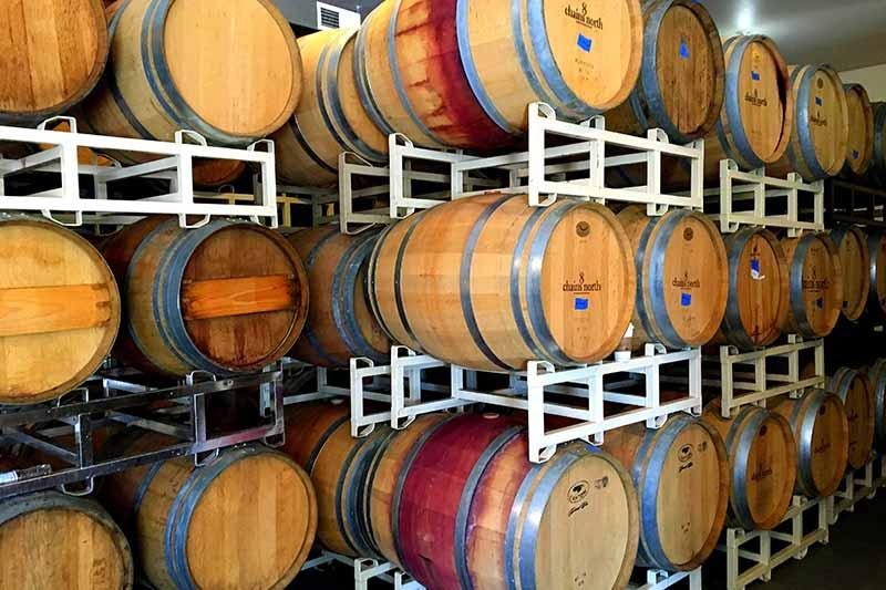 wine barrels in production
