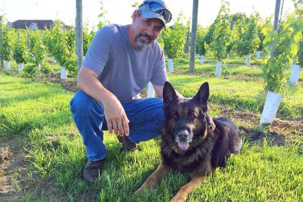 Owner and Winegrower Ben Renshaw in the vineyard with Jaeger