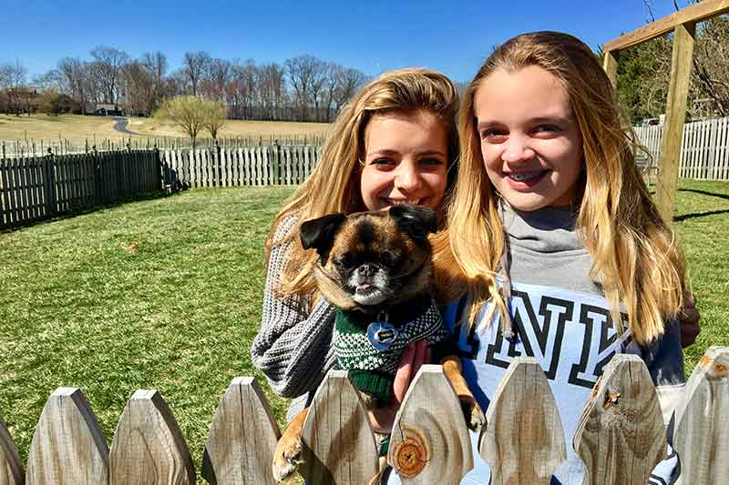 dog-friendly wineries 8 Chains North dog park