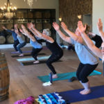 sip and flow yoga